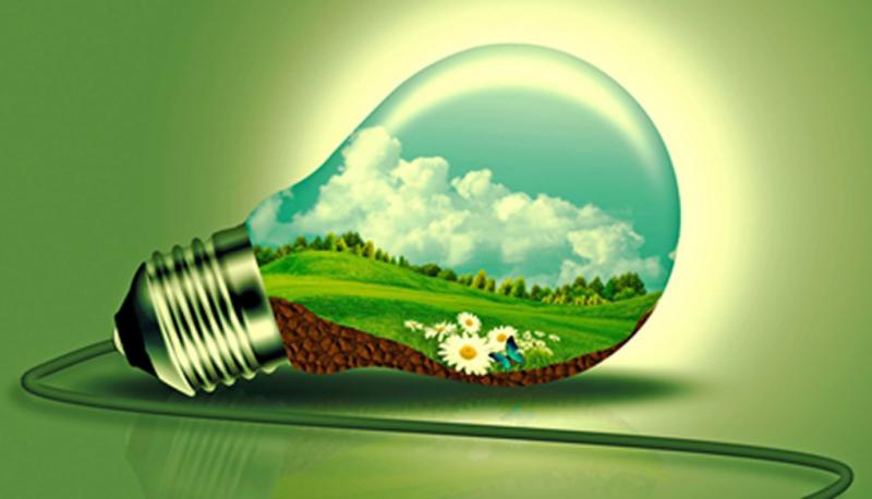 Sustainability goGreen Lightbulb
