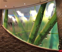 3M Window Film - Decorative