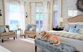 home window tint, Virginia